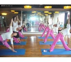 网信教育九亭校区常年提供瑜伽拉丁舞培训随报随学
