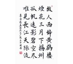 九亭网信教育少儿书法培训行业协会老师执教