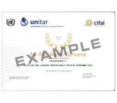 联合国语言培训项目(国际汉语教师)--11月周日班