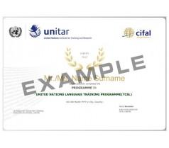 联合国语言培训项目(国际汉语教师)
