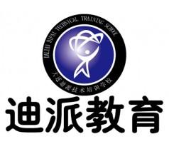 大连迪派学校会计从业资格证培训,大连迪派信息技术培训学校