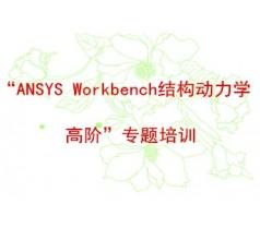 """ANSYS Workbench结构动力学高阶""专题培训"