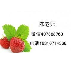 上海施工员预算员测量员报名条件