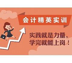 会计精英线上实训(工业+商业)